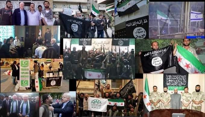 McCain and FSA